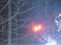 چترال: گول نیشنل پارک میں آگ سے تباہی